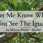 Let Me Know When You See The Iguana