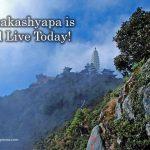 Mahakashyapa is Still Live Today!