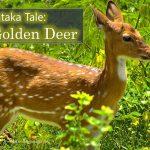 Jataka Tale: The Golden Deer