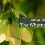 Jataka Tale: The Whatnot Tree